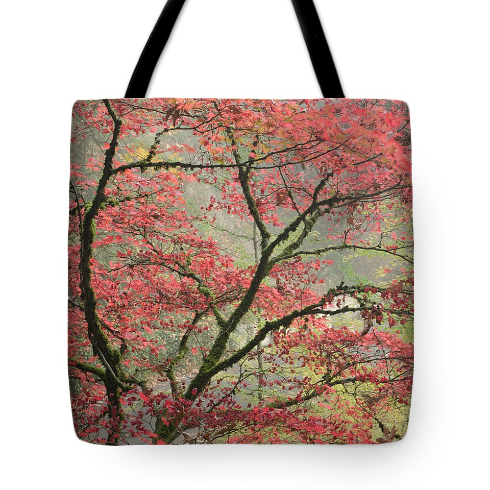 Maple Tote Bag featuring the photograph Red Zen by Don Schwartz