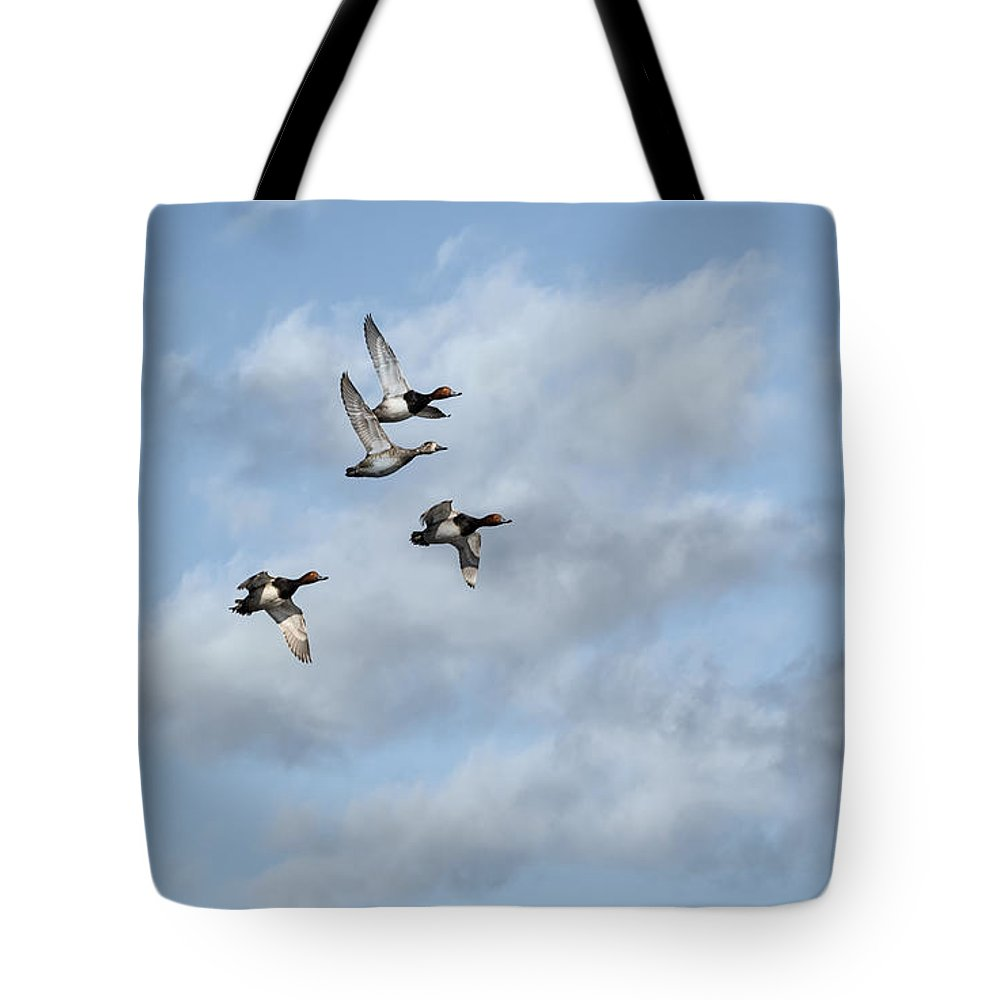 Redheaded Ducks Tote Bag featuring the photograph Redheaded Ducks Riding The Storm by Thomas Young