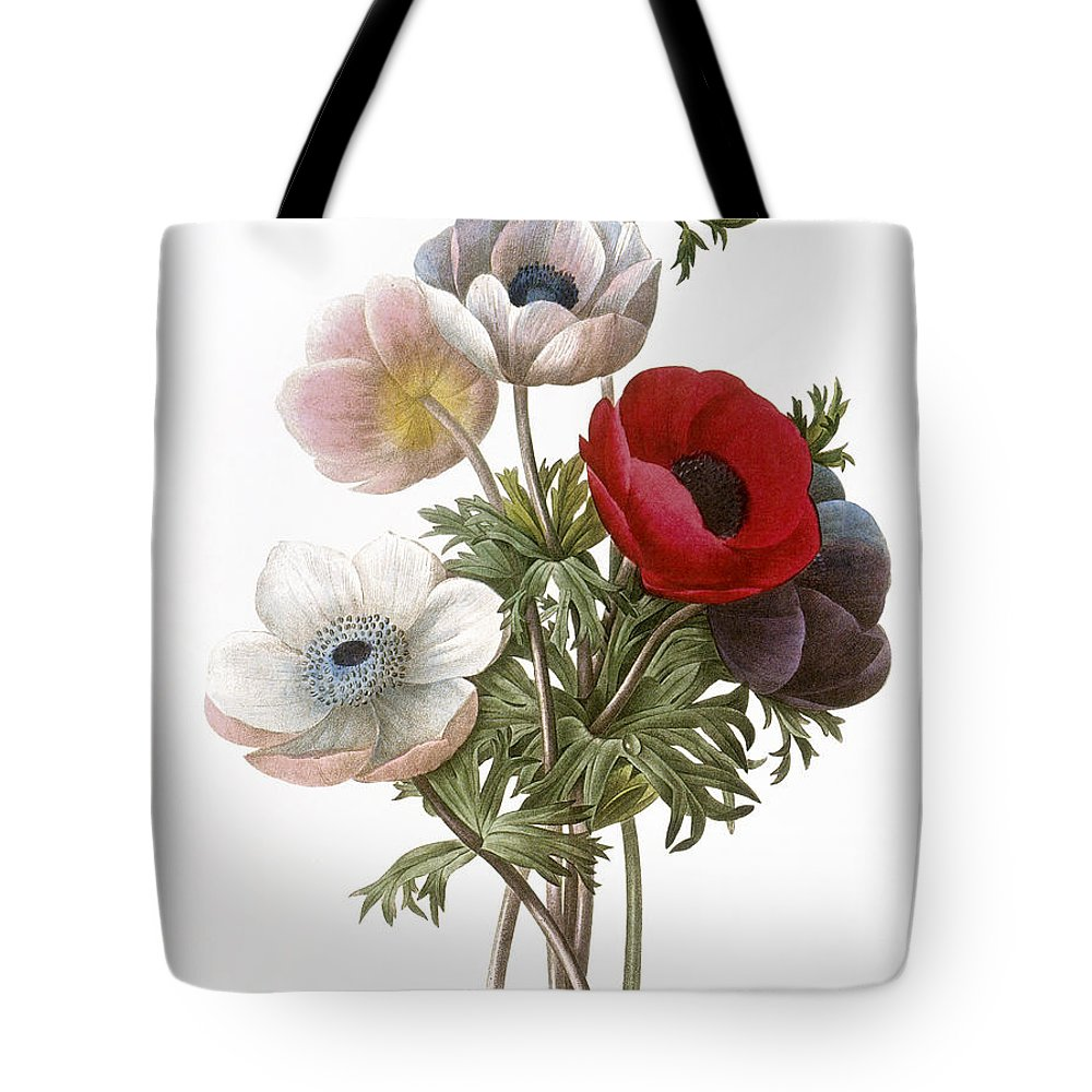 1833 Tote Bag featuring the photograph Redoute: Anemone, 1833 by Granger