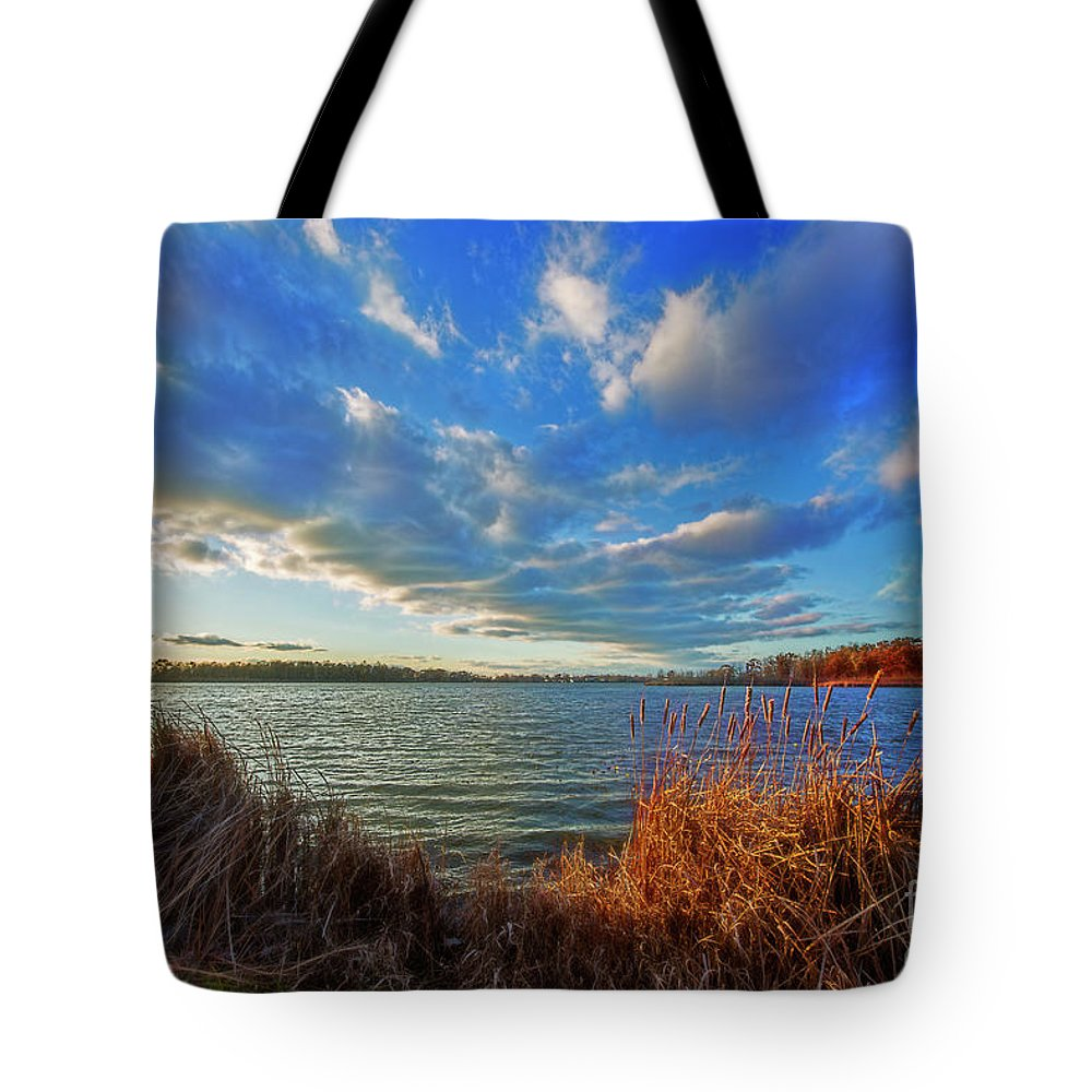 Reeds Tote Bag featuring the photograph Reeds And Wind by David Arment