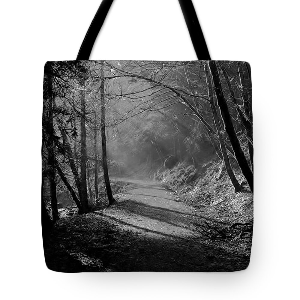 Reelig Glen Tote Bag featuring the photograph Reelig Forest Walk by Gavin Macrae