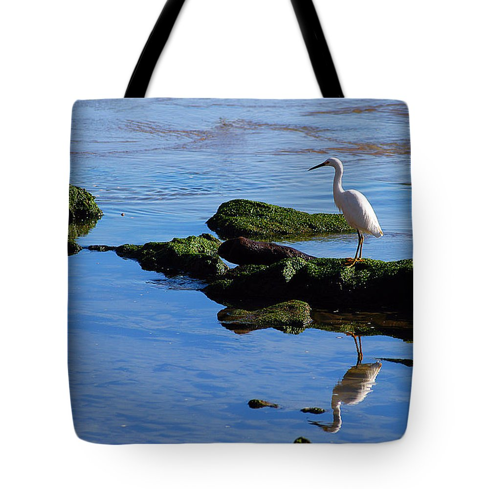 Clay Tote Bag featuring the photograph Reflecting On Dinner by Clayton Bruster