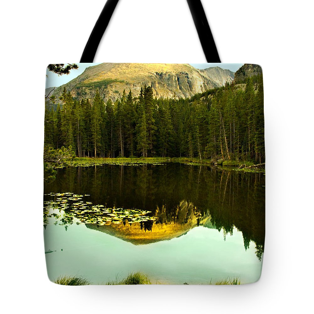 Reflection Tote Bag featuring the photograph Reflection by Marilyn Hunt