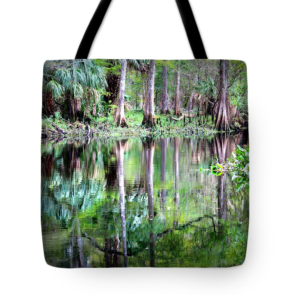 Florida Tote Bag featuring the photograph Reflection Of Cypress Trees by Carol Groenen