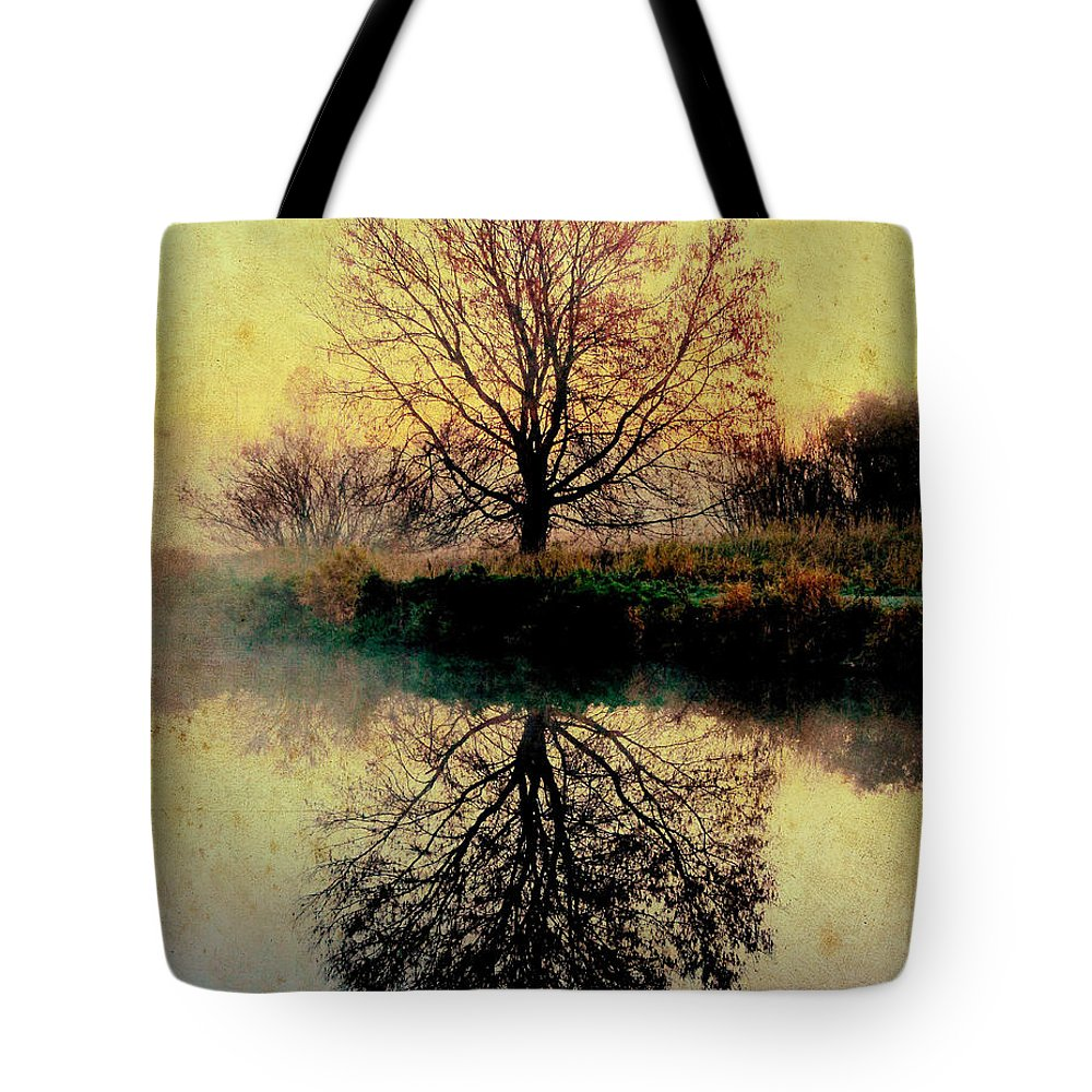 Landscape Tote Bag featuring the photograph Reflection On Golden Pond by Karen Castillo