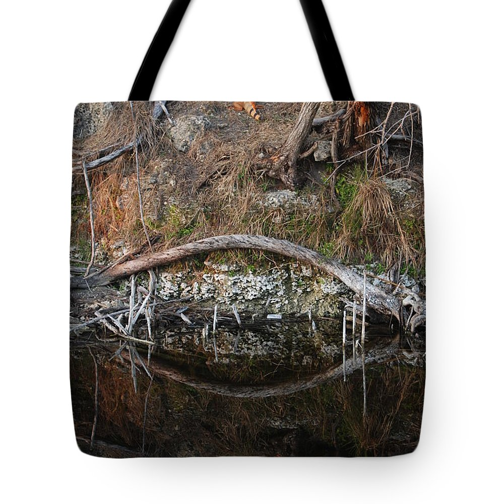 Iguana Tote Bag featuring the photograph Reflections Iguana by Rob Hans