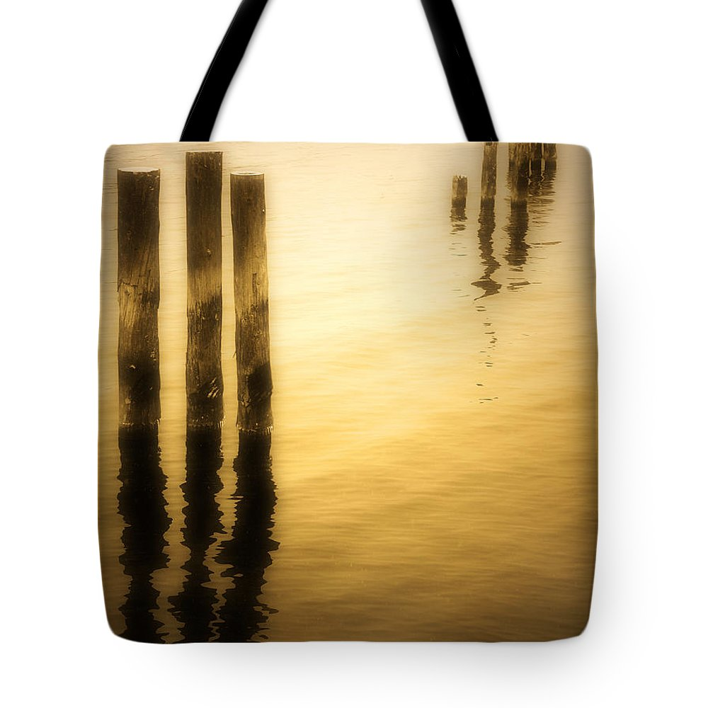 Reflections Tote Bag featuring the photograph Reflections In Gold by Tara Turner