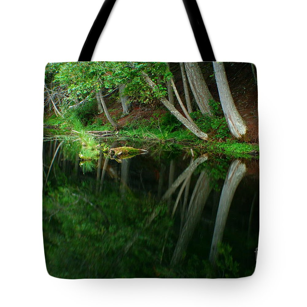 Forest Tote Bag featuring the photograph Reflections Of A Forest by Idaho Scenic Images Linda Lantzy