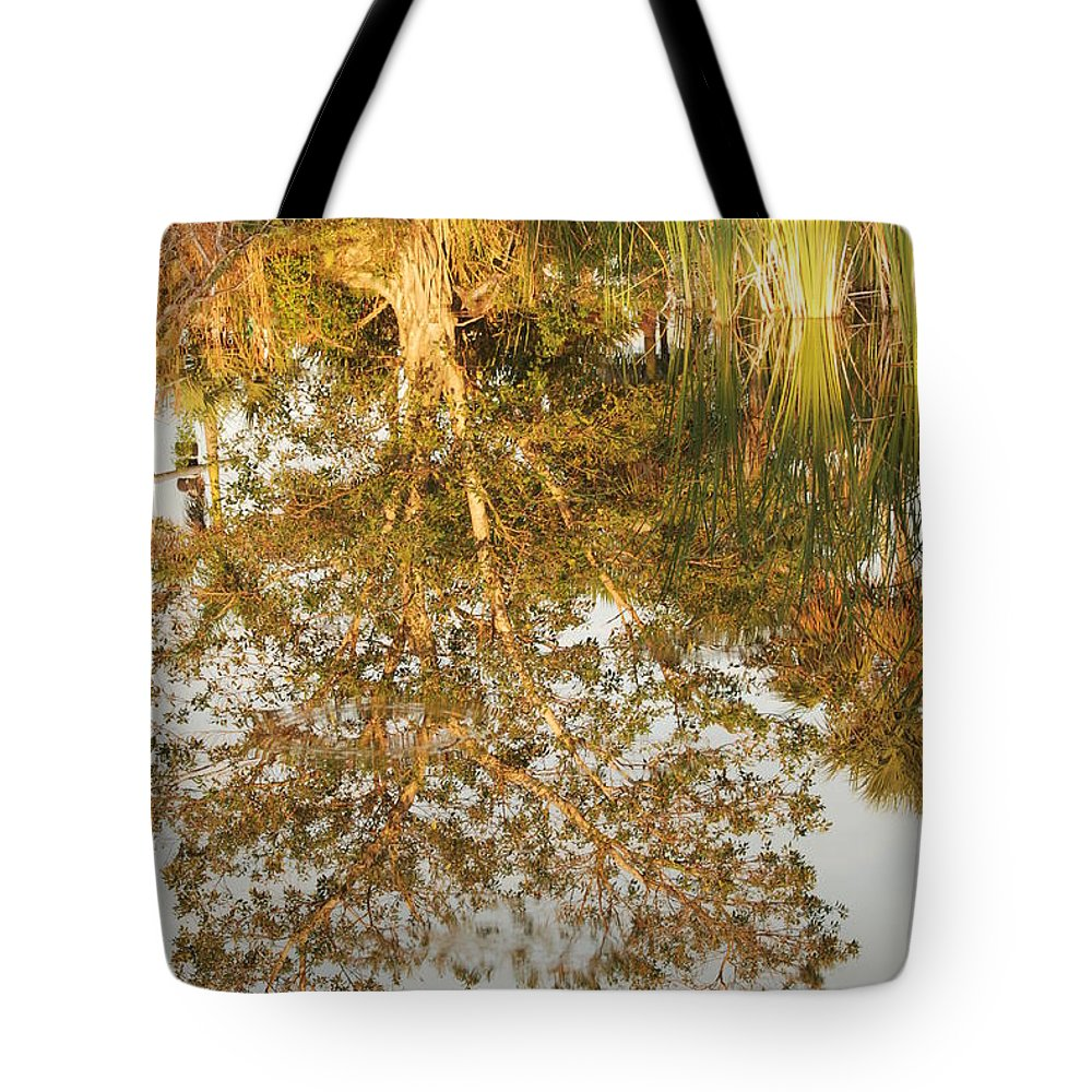 Sunsets Tote Bag featuring the photograph Reflections Of Old Miss by Rob Hans
