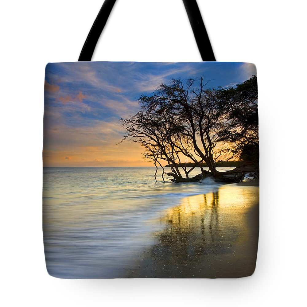 Waves Tote Bag featuring the photograph Reflections Of Paradise by Mike Dawson