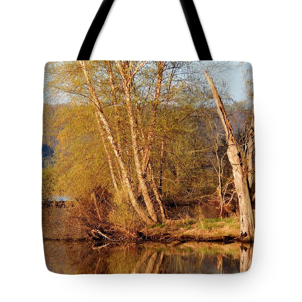Spring Tote Bag featuring the photograph Reflections Of Spring by Wild Thing