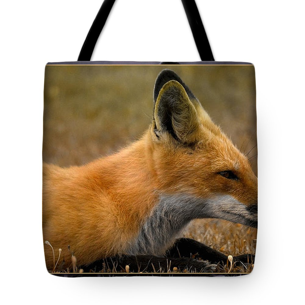 Fox Tote Bag featuring the photograph Relax 2 by WB Johnston