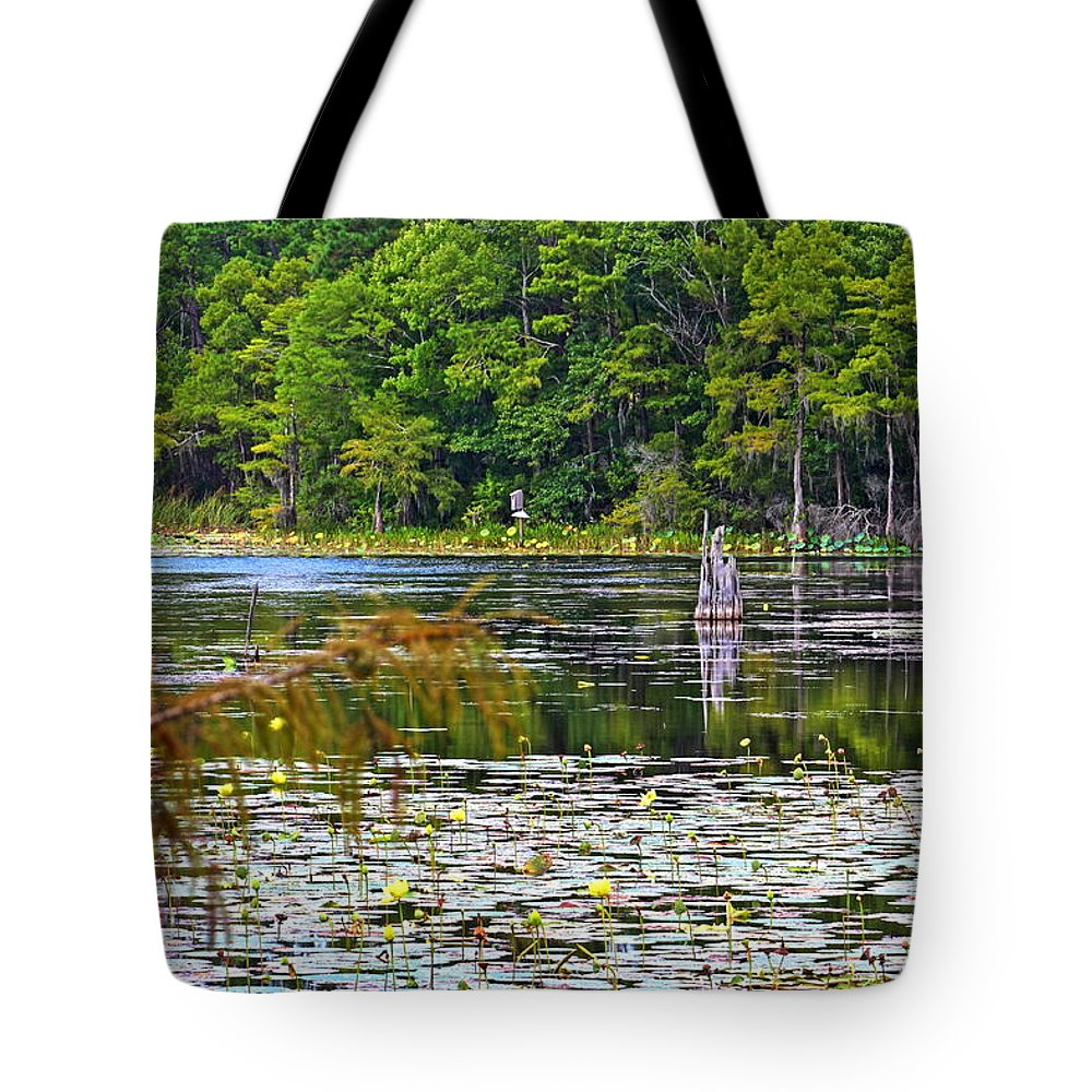 Orton Pond Tote Bag featuring the photograph Remains Of A Tree by Rand Wall
