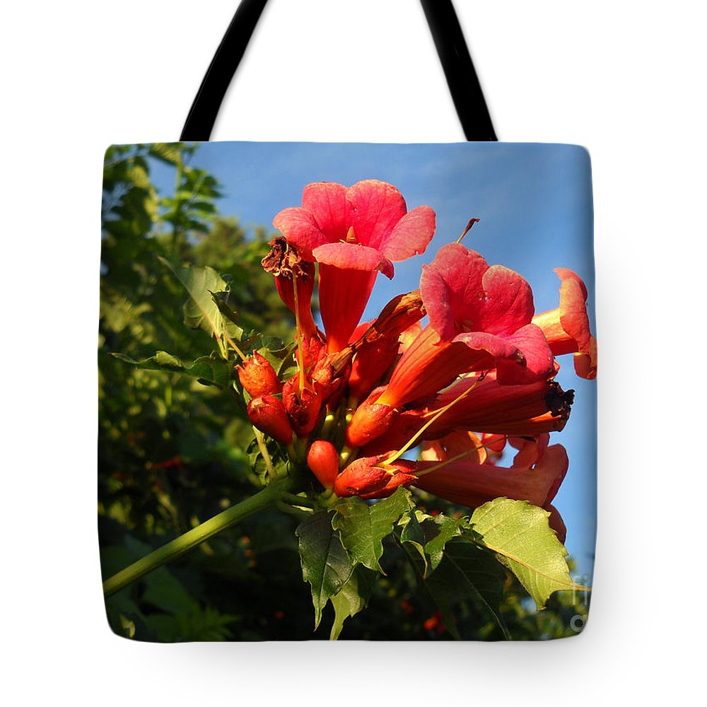 Red Tote Bag featuring the photograph Resplendent Imperfection by Amanda Jones