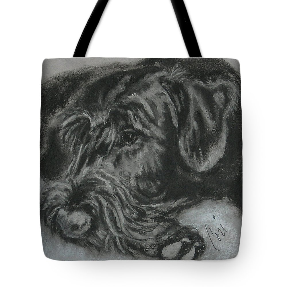 Dog Tote Bag featuring the drawing Restful Thoughts by Cori Solomon