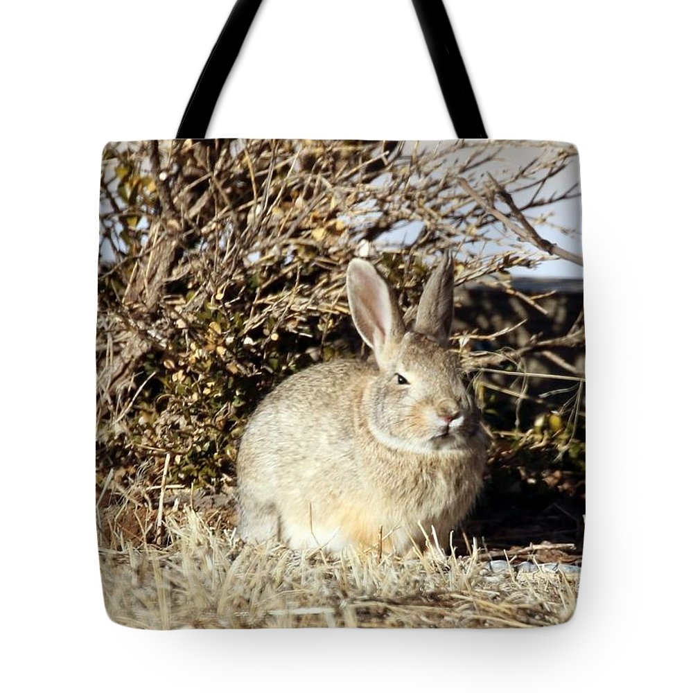 Cottontail Tote Bag featuring the photograph Resting Cottontail by Angela Koehler