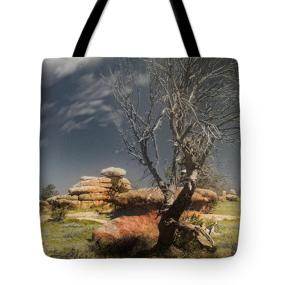 Trees Tote Bag featuring the photograph Resting In Peace by John Anderson