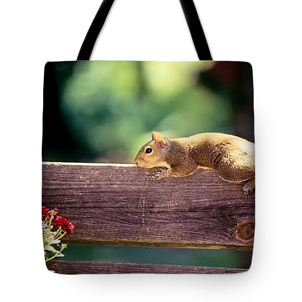 Animals Tote Bag featuring the photograph Resting In The Sun by Jan Amiss Photography