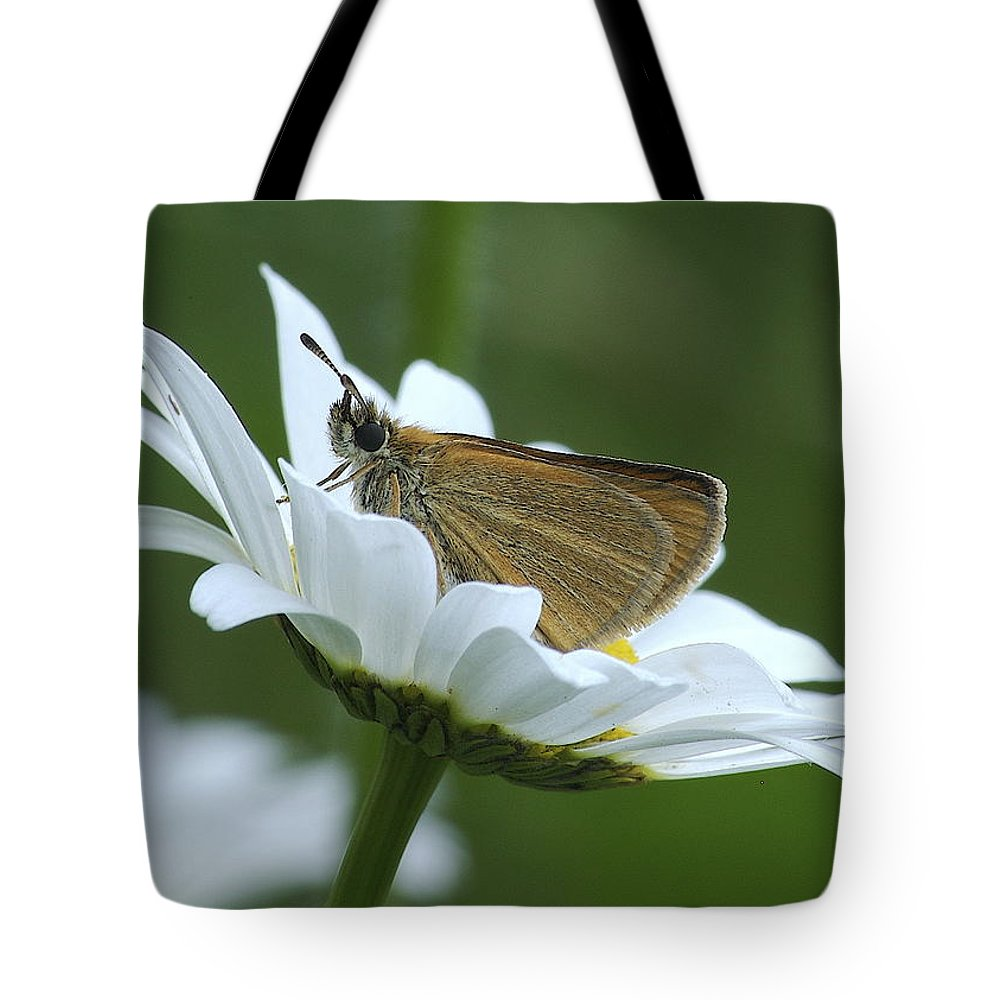 Daisy Tote Bag featuring the photograph Resting Place by Michael Peychich