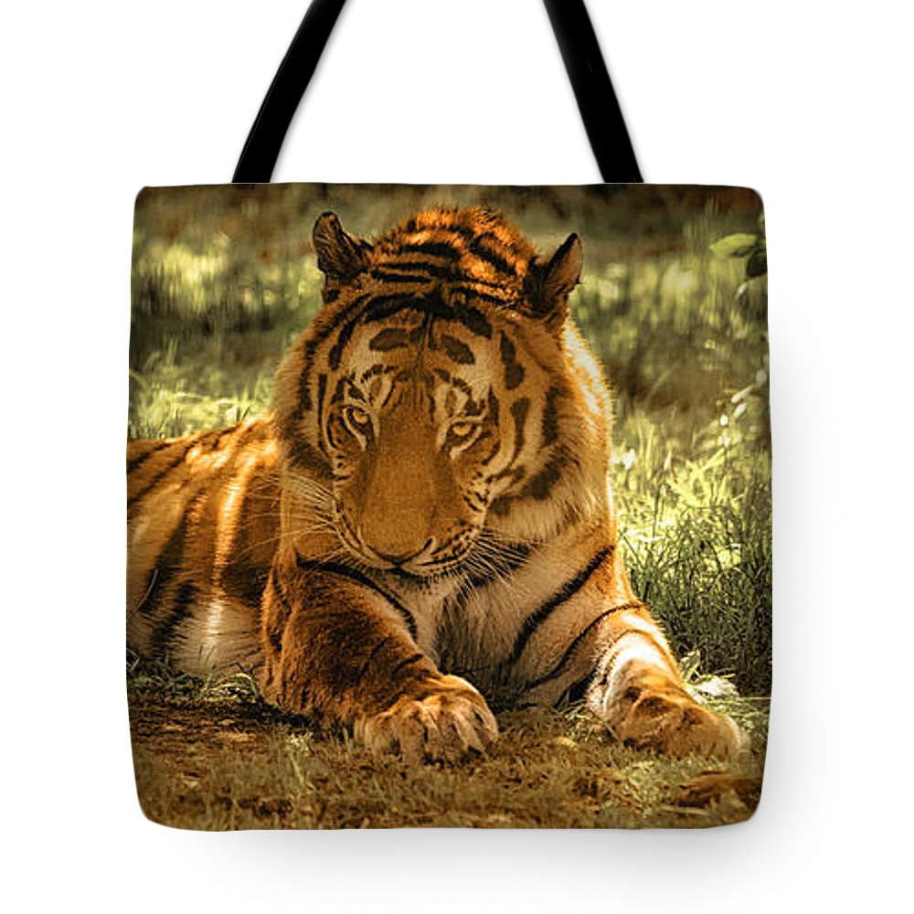 Tiger Tote Bag featuring the photograph Resting Tiger by Chris Boulton
