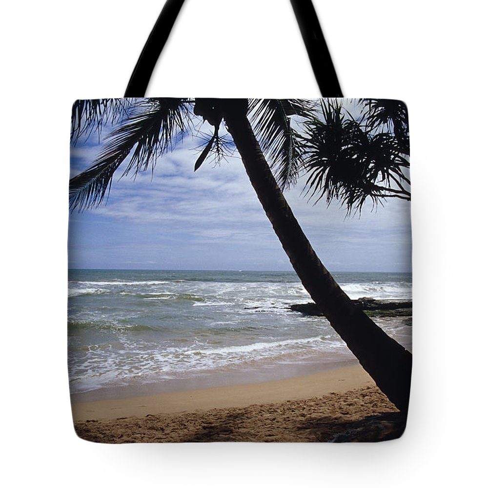 Near Bentota Beach Tote Bag featuring the photograph Resting Under The Shade Of An Idyllic by Jason Edwards