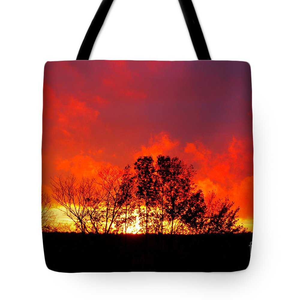 Diane Berry Tote Bag featuring the photograph Revelation by Diane E Berry