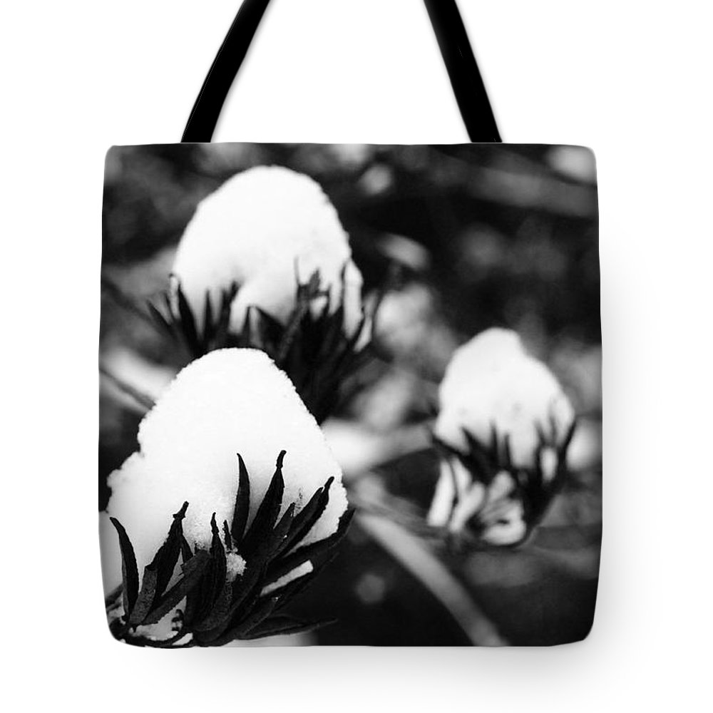 Winter Tote Bag featuring the photograph Revival by Daniel Csoka