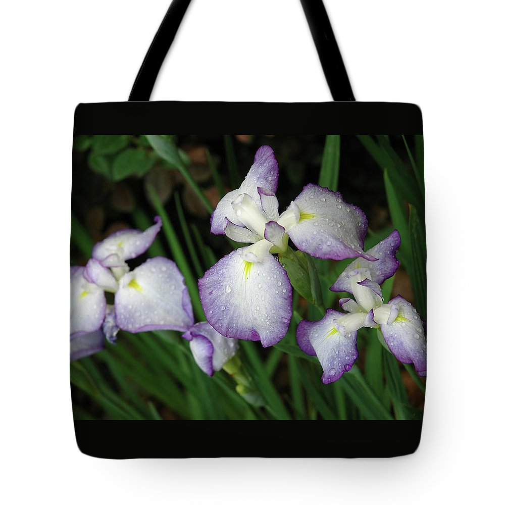 Iris Tote Bag featuring the photograph Rhapsody by Marie Hicks