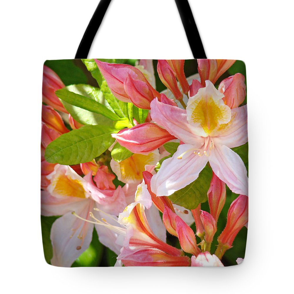 Rhodies Tote Bag featuring the photograph Rhodies Pink Orange Yellow Summer Rhododendron Floral Baslee Troutman by Baslee Troutman
