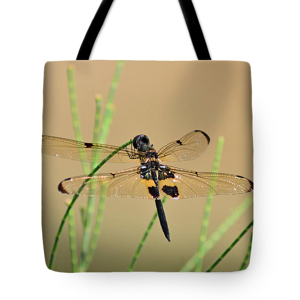 Perch On Twig Tote Bag featuring the photograph Rhyothemis Phyllis by Rashdy Arshad