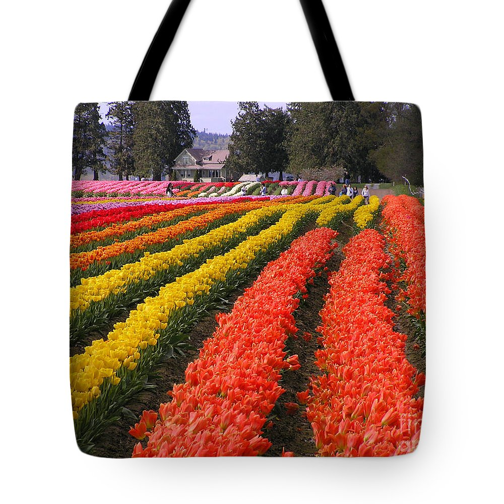Tulips Tote Bag featuring the photograph Ribbons Of Color by Louise Magno
