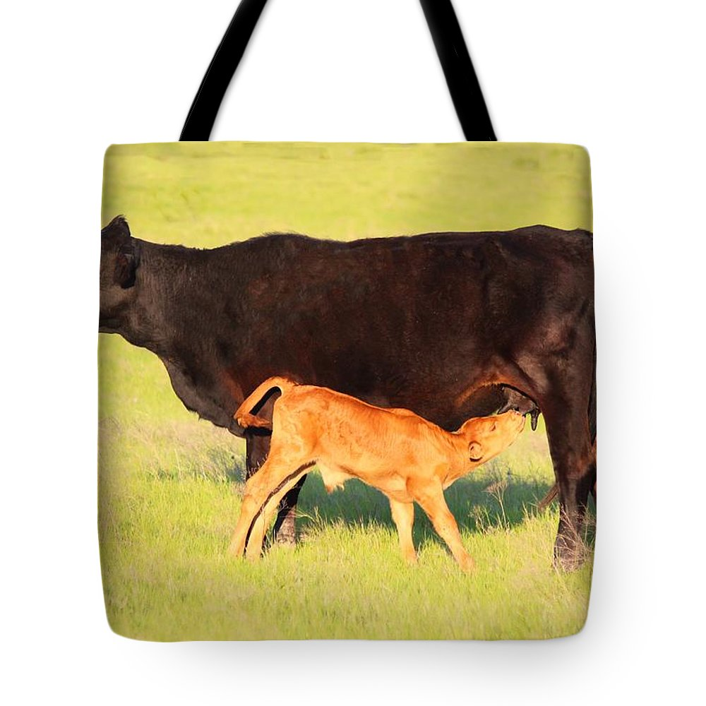 Cow Tote Bag featuring the photograph Rich And Creamy Snack 2 by Jeanie Mann
