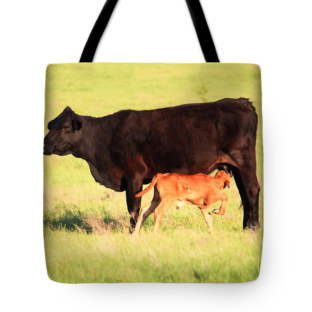 Cow Tote Bag featuring the photograph Rich And Creamy Snack by Jeanie Mann