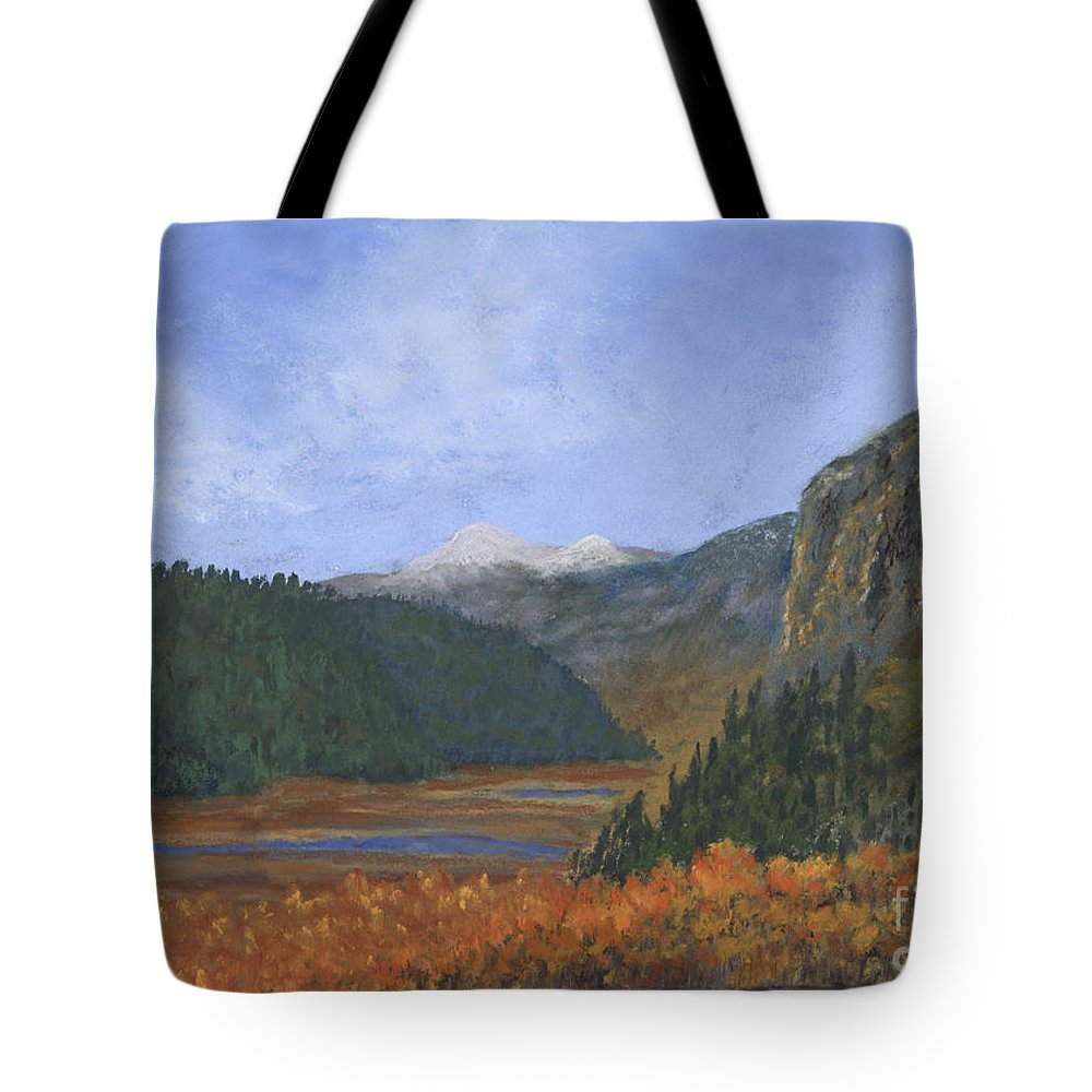 Creede Tote Bag featuring the painting Rio Grande Headwaters by Ginny Neece