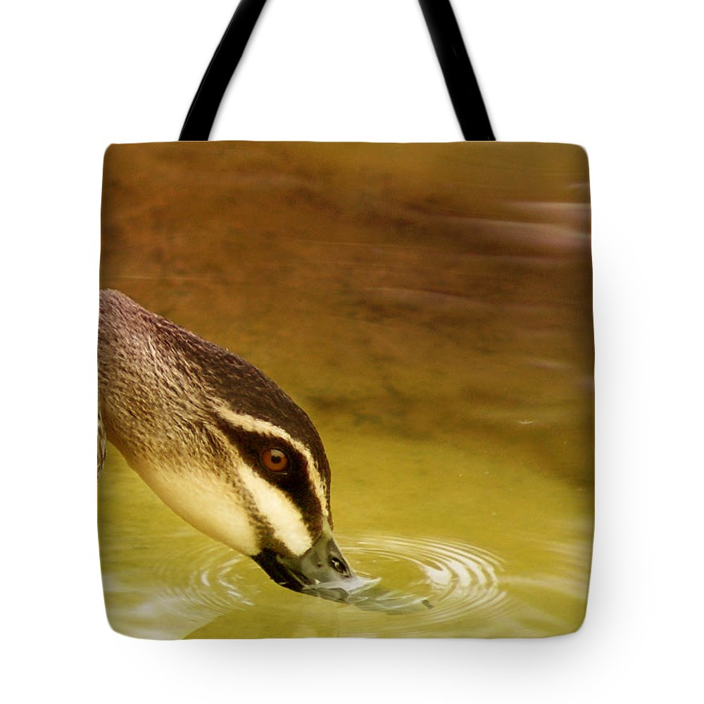 Animals Tote Bag featuring the photograph Ripples by Holly Kempe