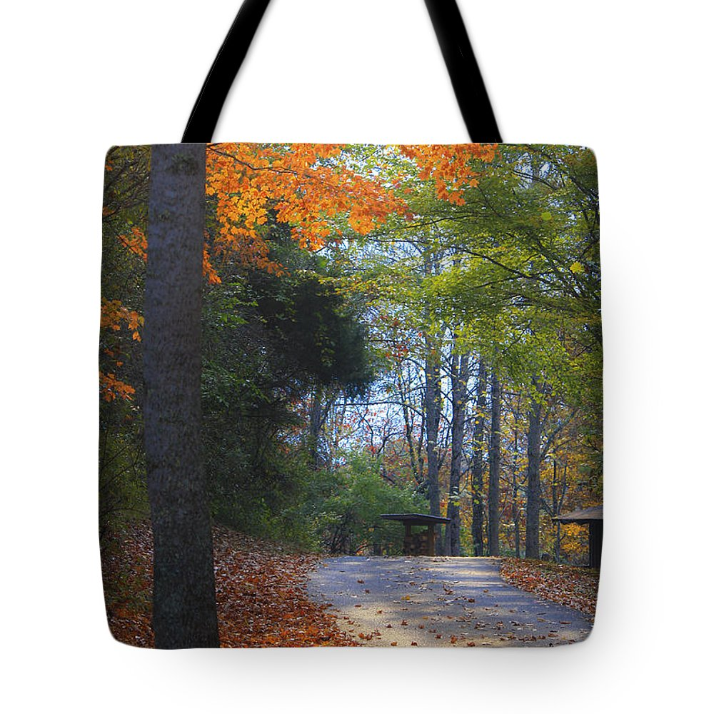 Cabin Tote Bag featuring the photograph Road To Cabin 2 by Teresa Mucha