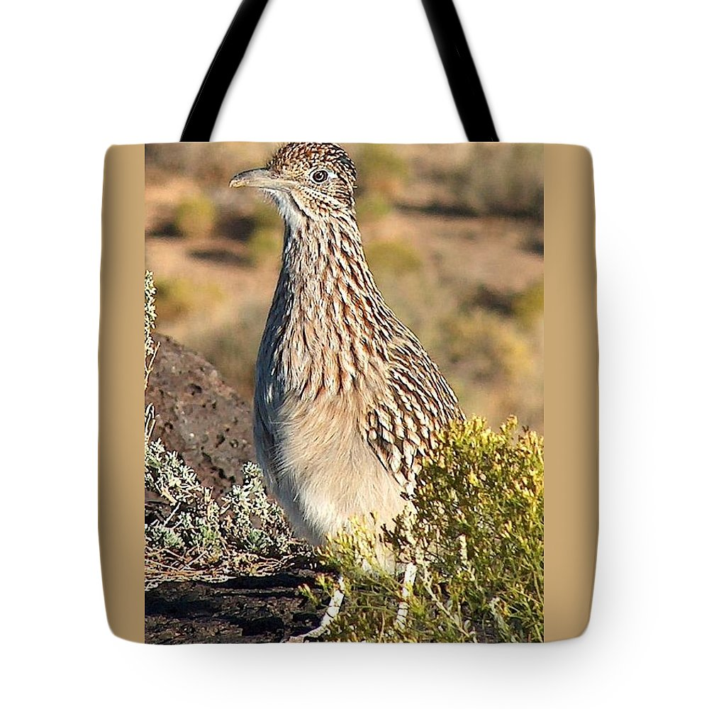 Roadrunner Tote Bag featuring the photograph Roadrunnner At The Petroglyphs by Tim McCarthy