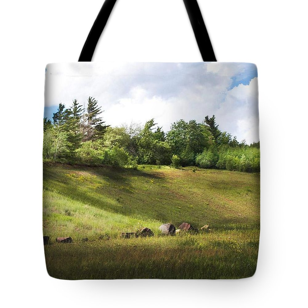 Michigan Tote Bag featuring the photograph Roadside Hill by Kendall Tabor