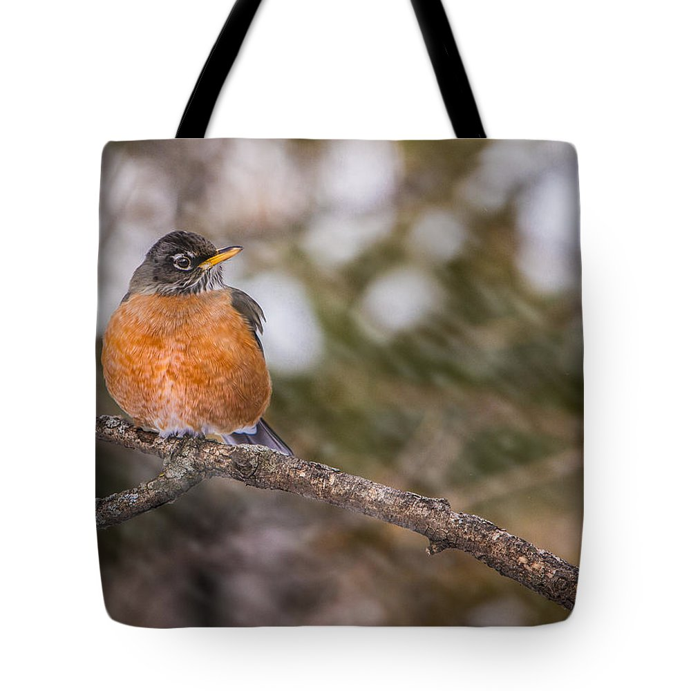Animals Tote Bag featuring the photograph Robin In Winter by Rikk Flohr