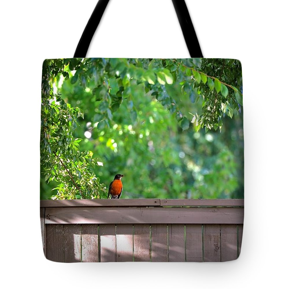 Bird Tote Bag featuring the photograph Robin On The Backyard Fence by DUG Harpster