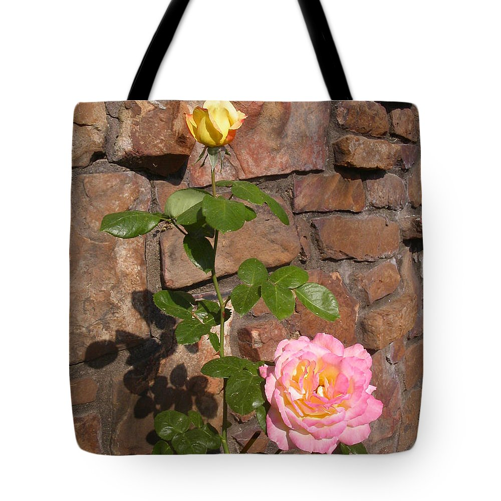 Rose Tote Bag featuring the photograph Rock And Rose by Anne Cameron Cutri