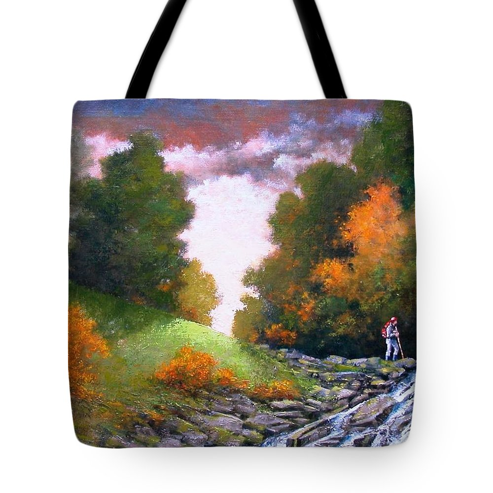 Artist Tote Bag featuring the painting Rock Creek by Jim Gola