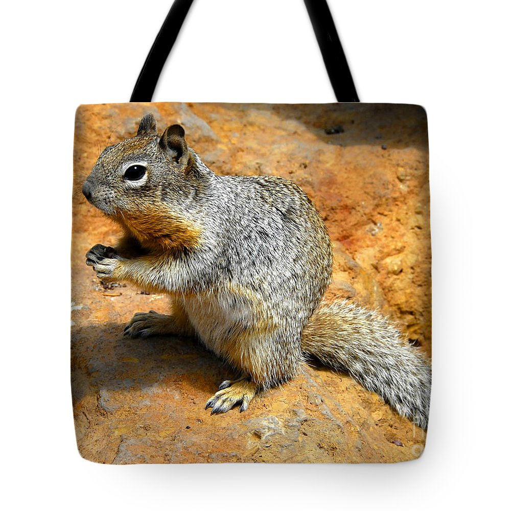 Rock Squirrel Tote Bag featuring the photograph Rock Squirrel by David Lee Thompson