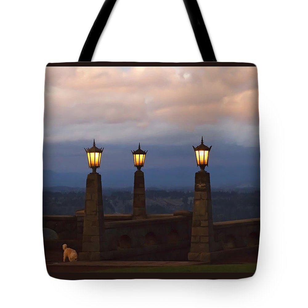Rocky Butte Lamps Tote Bag featuring the photograph Rocky Butte Lamps by Wes and Dotty Weber