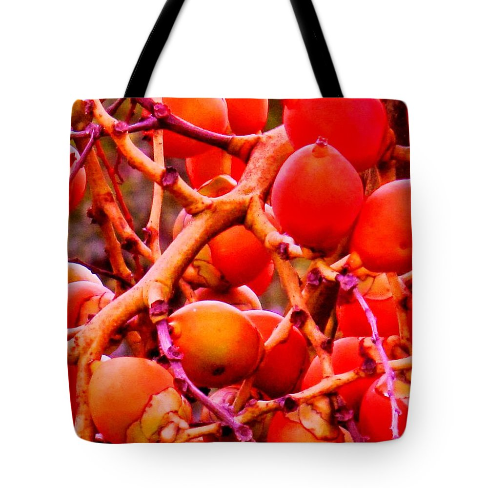 Red Tote Bag featuring the photograph Romney Red by Ian MacDonald