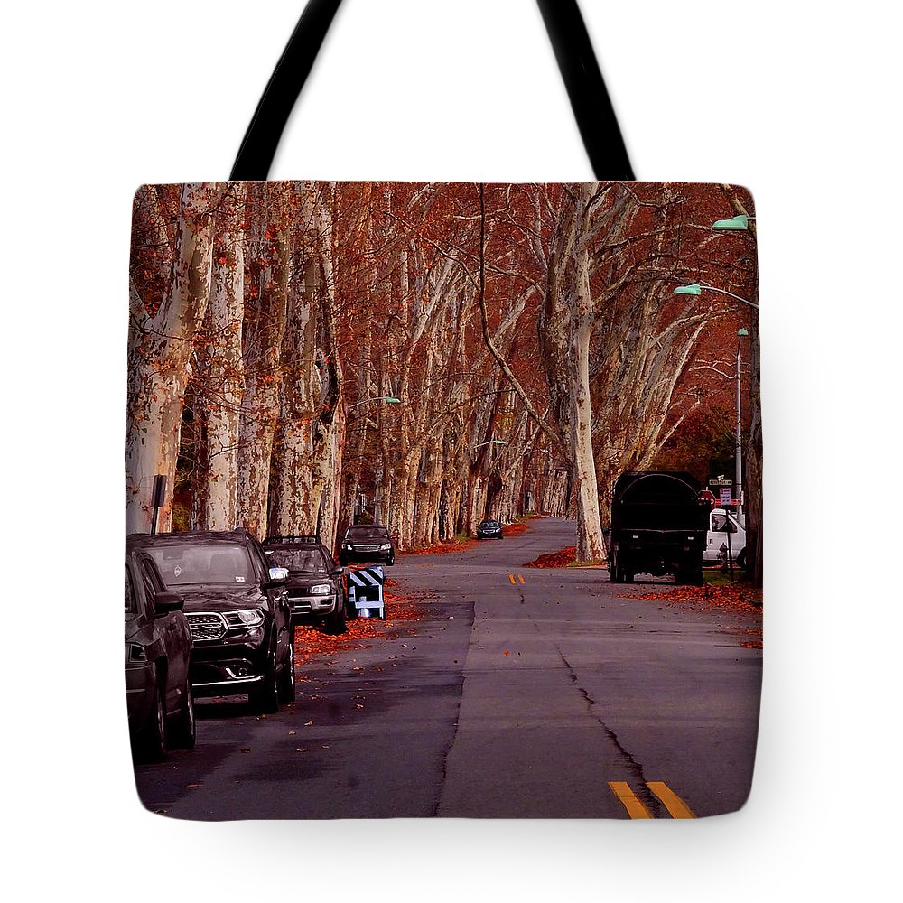 Roosevelt_avenue;trees;sycamore;urban;east_orange;new+jersey;calm Tote Bag featuring the photograph Roosevelt Avenue Red by Leon deVose
