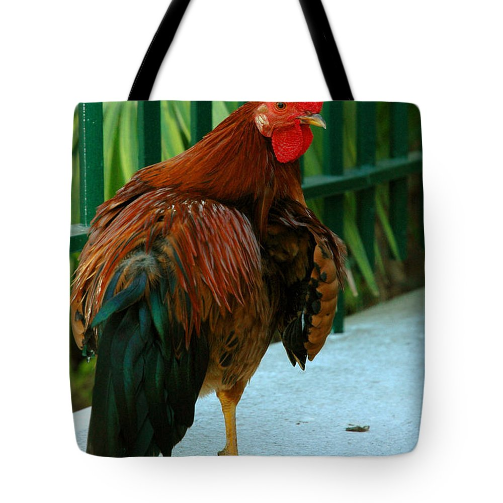 Rooster Tote Bag featuring the photograph Rooster By The Fence by Susanne Van Hulst