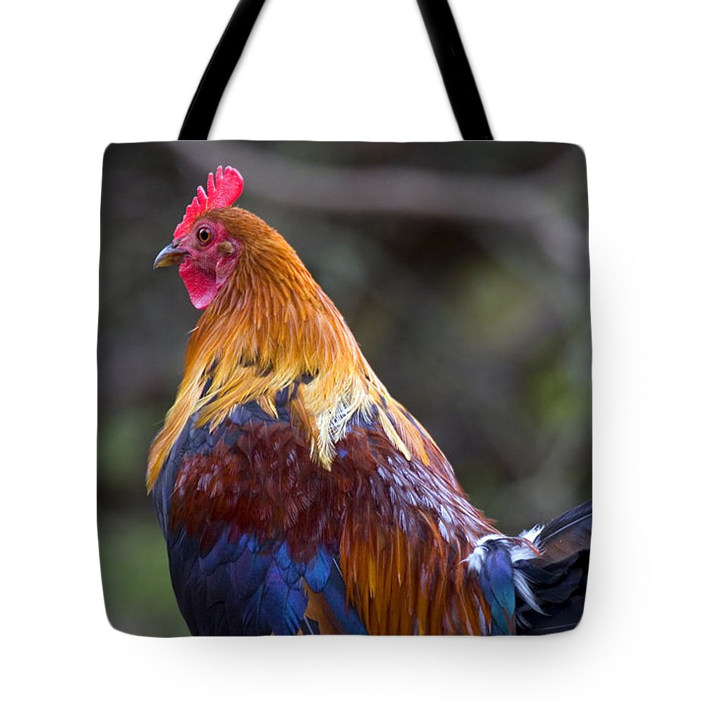 Rooster Tote Bag featuring the photograph Rooster Rooster by Mike Dawson