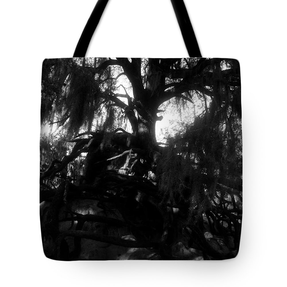 Roots Tote Bag featuring the photograph Roots Of Life by David Lee Thompson