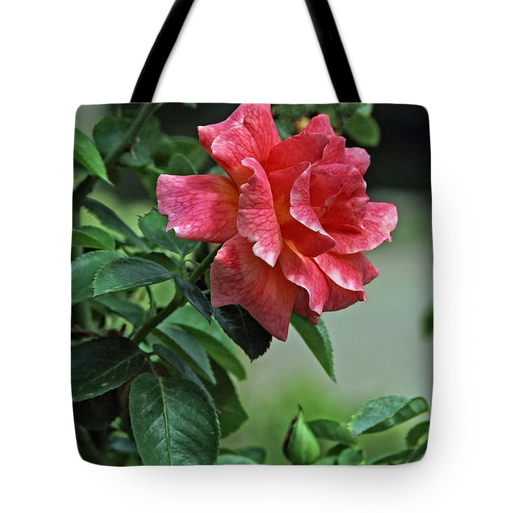 Nature Tote Bag featuring the photograph Rose 7898 by Earl Johnson
